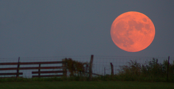 Harvest moon resized 600