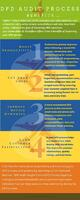 Infographic on A Quick Look at Improving Your DPD Audit Process